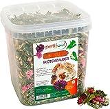 petifool Blütenzauber 360g - Ergänzungsfutter für Nager - natürliches Nagerfutter für Kaninchen, Meerschweinchen, Hamster, Chinchilla & mehr - ohne künstliche Zusätze - 100% Natur -artgerechtes Futter