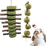 Kauspielzeug für Kaninchen, Hamster, Kauspielzeug mit Apfelholzstäbchen, natürlicher Graskuchen und Grasball, Zähneknirschen, Spielzeug für Kaninchen, Hamster,2 Stück