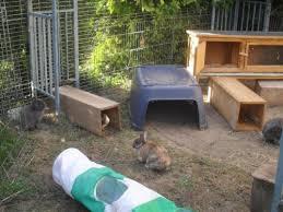 Kaninchen Außenhaltung