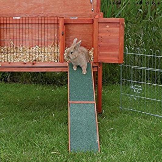 kaninchen außenhaltung info